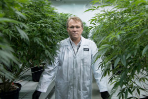 Canopy Growth international revenue jumps sixfold to CA$8.2 million