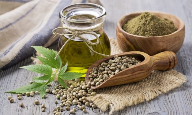 Researchers In Canada Studying Hemp Protein To Treat Hypertension