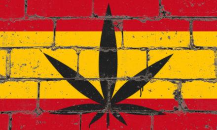 Far Beyond the Spanish Cannabis Scene: Spannabis 2019
