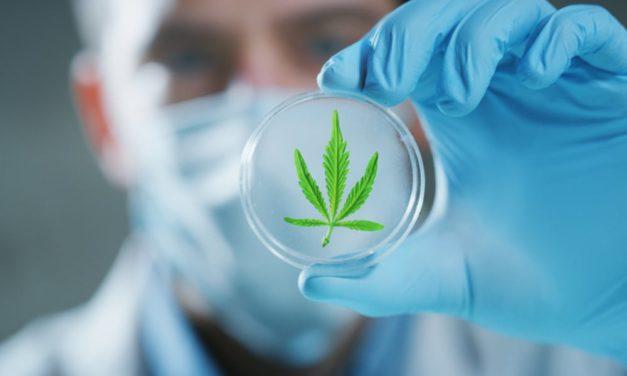 Alabama Lawmakers Pushing to Legalize Medical Marijuana