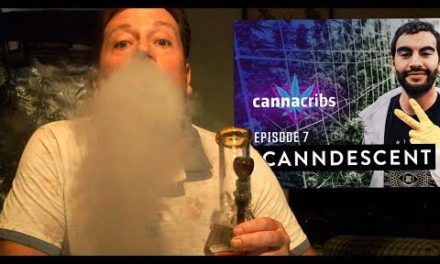 SHOUTOUT: CannaCribs Episode 7 OUT NOW!!! Most Expensive Cannabis in USA