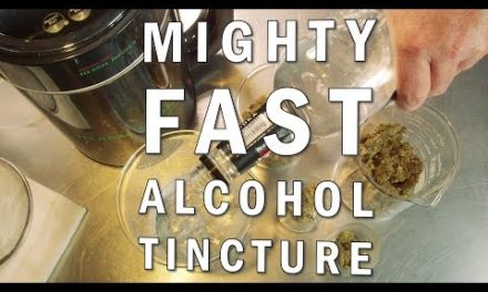 Mighty Fast Herbal Infuser Alcohol Cannabis Tincture Recipe
