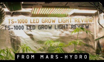 Mars-Hydro TS-1000 LED Grow Light Review