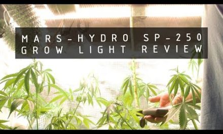 Mars-Hydro SP-250 LED Grow Light Review