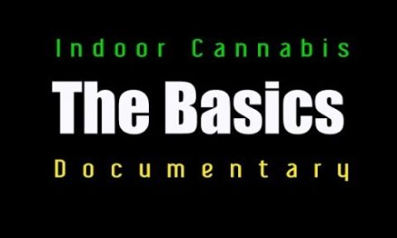 INDOOR CANNABIS TRAINING- THE BASICS