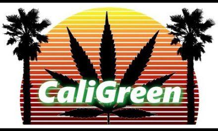 Cali Green Live Stream