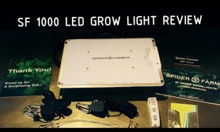 Spider Farmer SF 1000 LED Grow Light Review