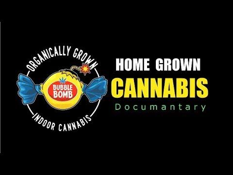 Home Grown Cannabis Documentary day1-5